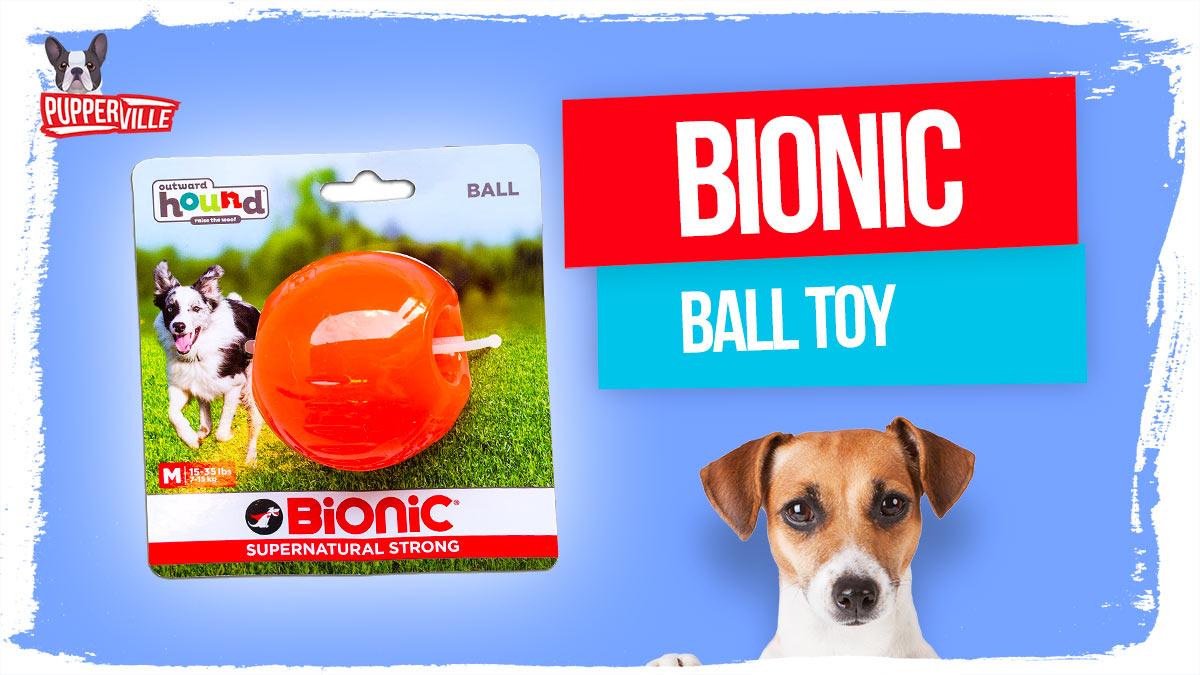 BIONIC-ball-toy