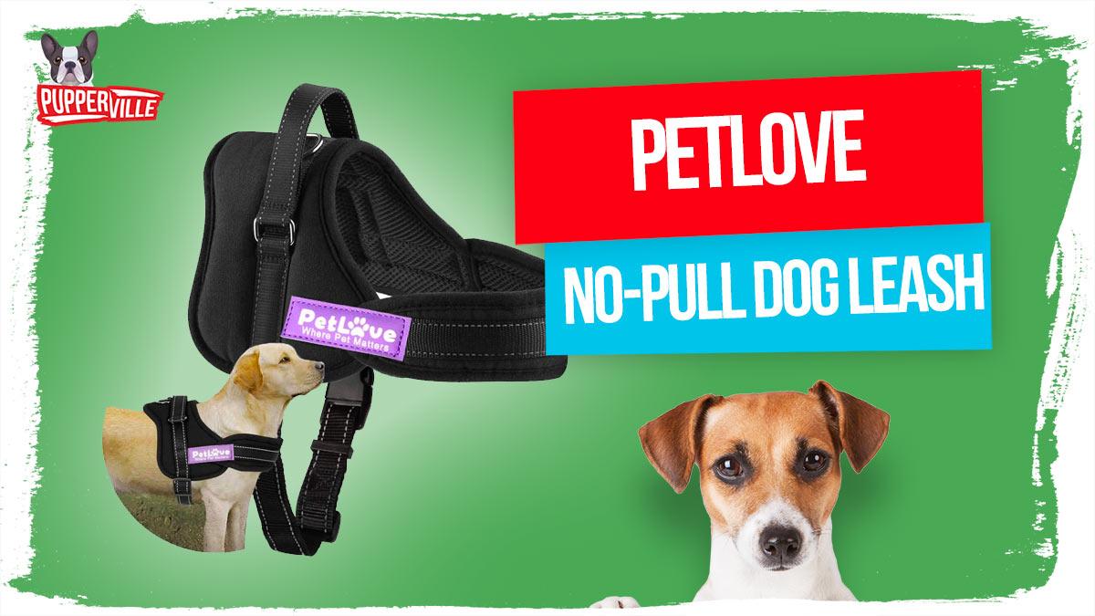 PetLove-Dog-Harness