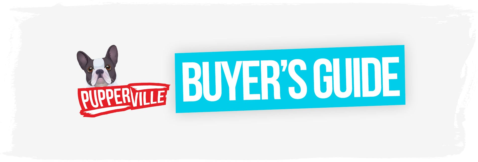 dry-dog-food-buyers-guide