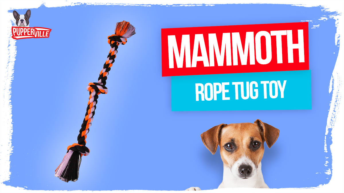 mammoth-rope-tug-toy