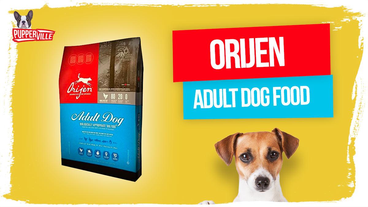 orijen-adult-dog-food