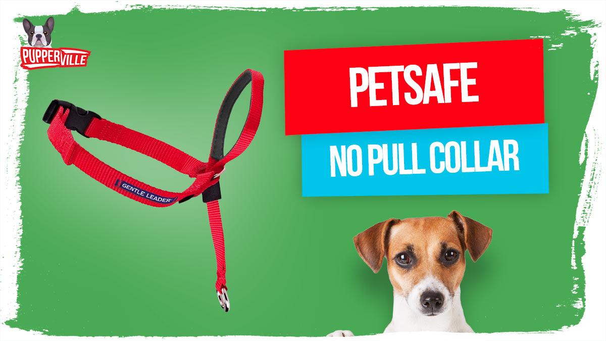petsafe-no-pull-collar