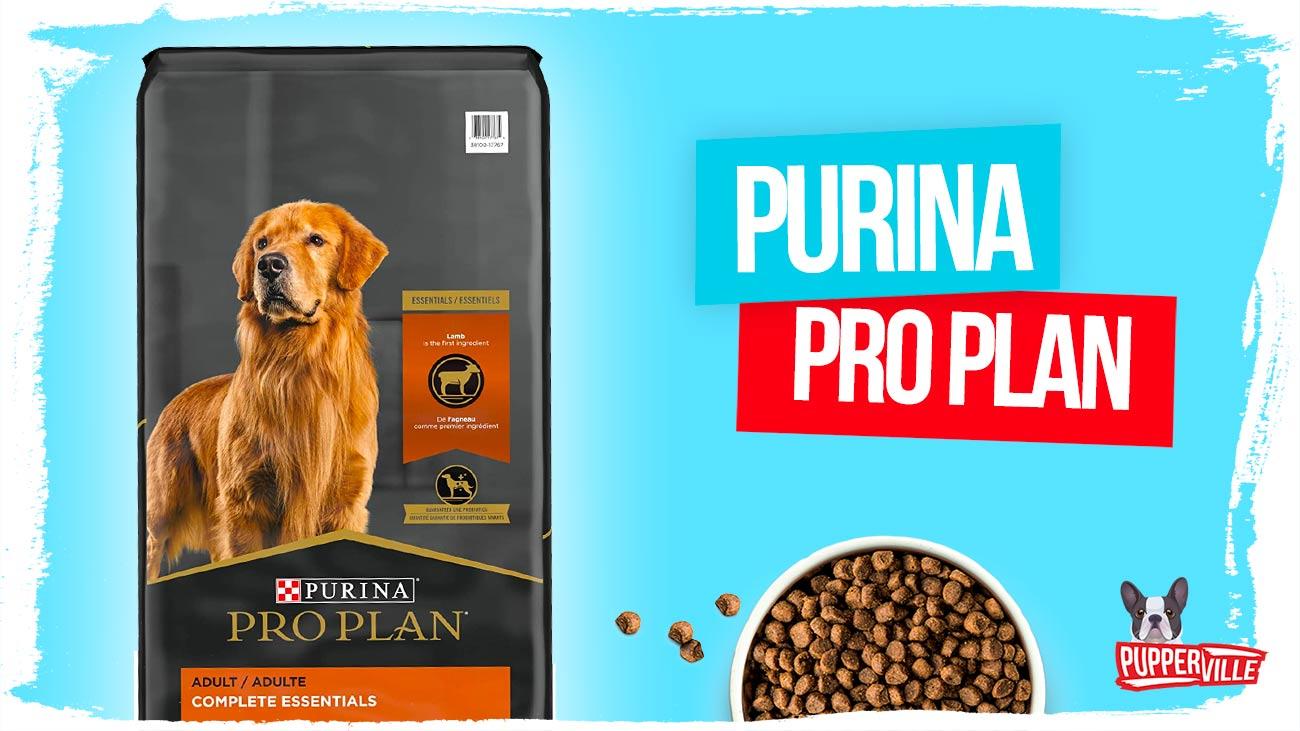 purina-pro-plan-dry-dog-food